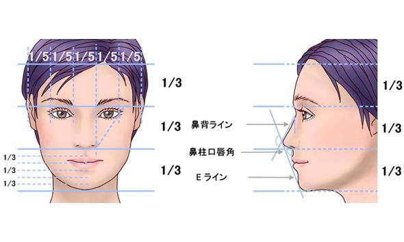 理想的な鼻の黄金比率