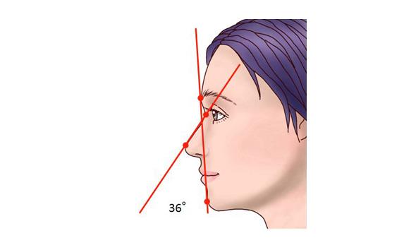 横からみた鼻の理想的な角度1