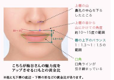 理想の唇図